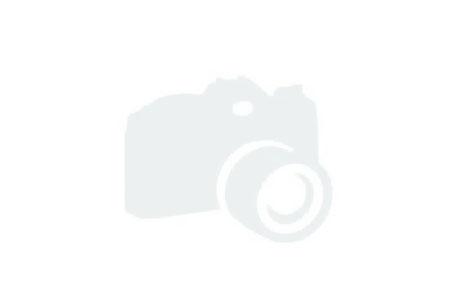 Bennington 25SPDXP No Image Available